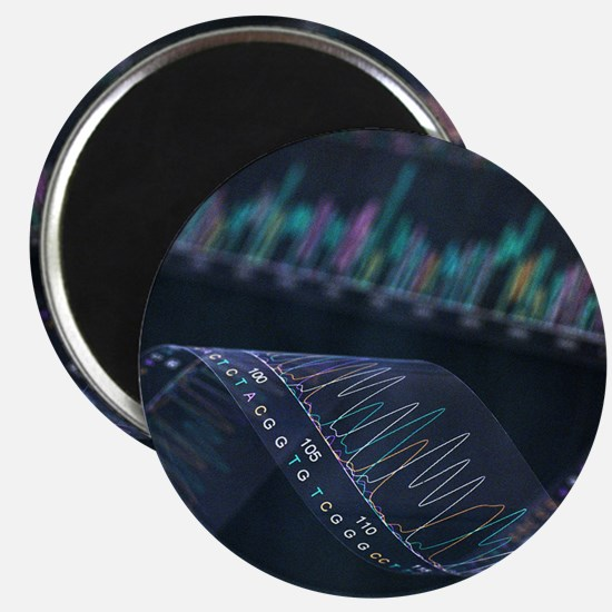 DNA analysis - Magnet