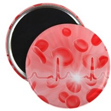 ECG and red blood cells - Magnet