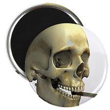 Smoking skeleton - 2.25