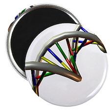 DNA molecule - 2.25
