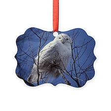 Snowy White Owl Ornament