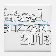 Survived Blizzard 2013 - Cathleen Tyson Designer T