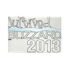 Survived Blizzard 2013 - Cathleen Tyson Designer R