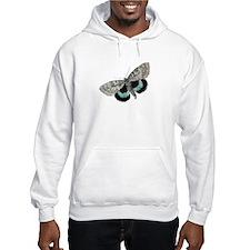 Moth Hoodie
