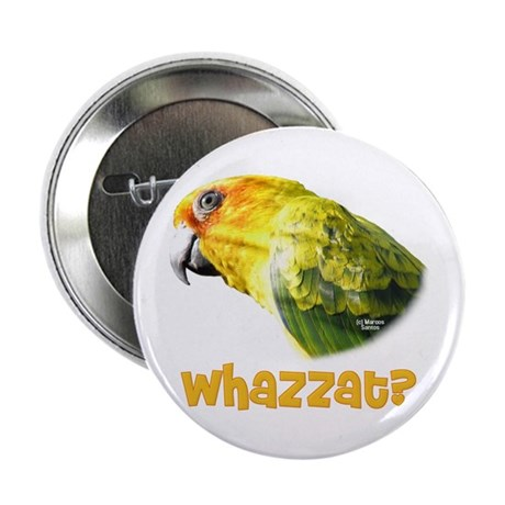 "Sun Conure: Whazzat? 2.25"" Button (10 pack)"