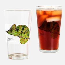 Veiled Chameleon Drinking Glass