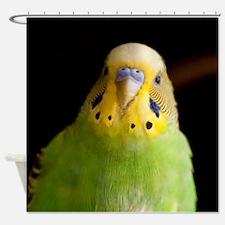 Cool Parakeet Shower Curtain