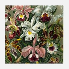 Botanical Orchids Tile Coaster