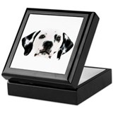 101 dalmatians Square Keepsake Boxes