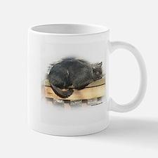 Cute Susie myers Mug