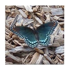 Astyanax Butterfly Tile Coaster