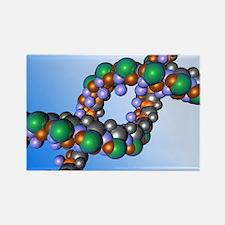 DNA - Rectangle Magnet
