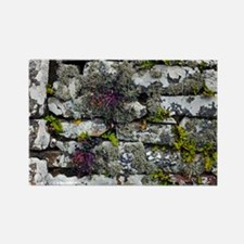 Drystone wall with plants - Rectangle Magnet