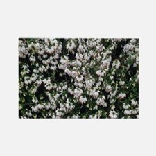 Heather 'White Hall' flowers - Rectangle Magnet