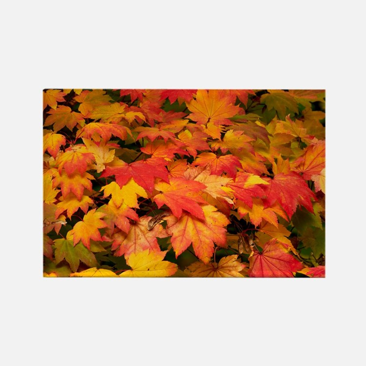 ) leaves - Rectangle Magnet