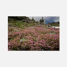 Mountain heathland - Rectangle Magnet