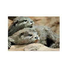 Oriental small-clawed otters - Rectangle Magnet