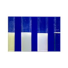 Silver halide precipitates - Rectangle Magnet