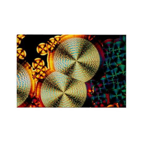 Vitamin C crystals - Rectangle Magnet
