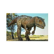 Allosaurus dinosaur, artwork - Rectangle Magnet