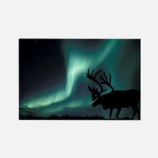 Aurora borealis and caribou - Rectangle Magnet