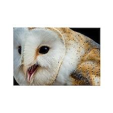 Barn owl calling - Rectangle Magnet
