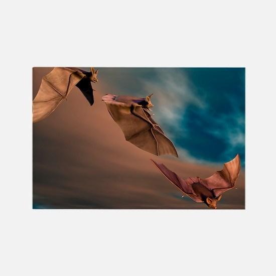 Bats in flight, artwork - Rectangle Magnet