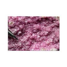 Cobalt calcite mineral sample - Rectangle Magnet
