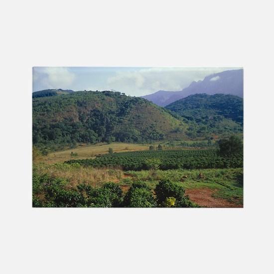 Coffee plantation - Rectangle Magnet