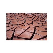Dried mud - Rectangle Magnet