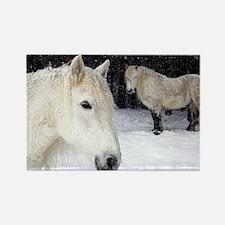 Highland ponies - Rectangle Magnet