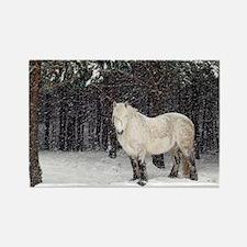 Highland pony - Rectangle Magnet