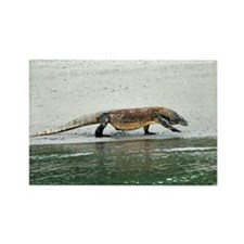 Komodo dragon on a beach - Rectangle Magnet