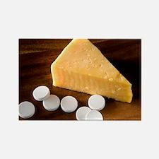 Lactase enzyme tablets - Rectangle Magnet