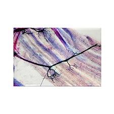 crograph - Rectangle Magnet