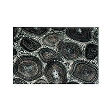 Orbicular diorite rock - Rectangle Magnet