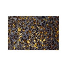 Pallasite meteorite - Rectangle Magnet