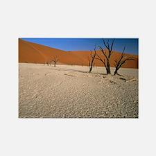 Sand dunes - Rectangle Magnet