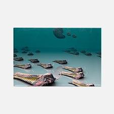 Trilobites - Rectangle Magnet