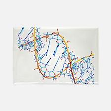 DNA molecule - Rectangle Magnet