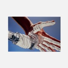 Artificial hand - Rectangle Magnet