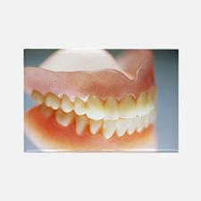 False teeth - Rectangle Magnet