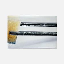 Bone biopsy sample - Rectangle Magnet