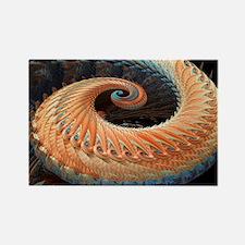 Dragon tail fractal - Rectangle Magnet