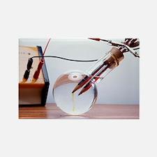 Electrolysis - Rectangle Magnet