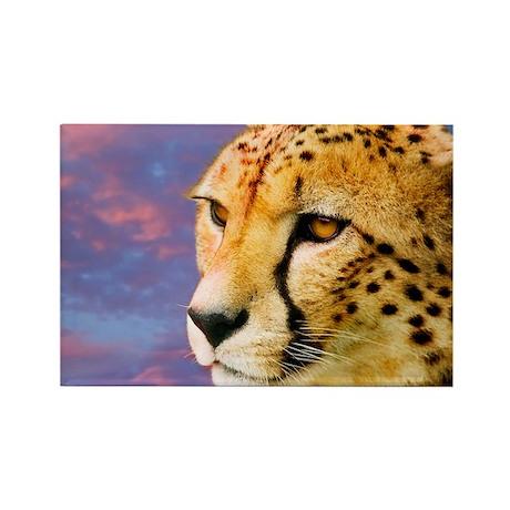 Cheetah - Rectangle Magnet