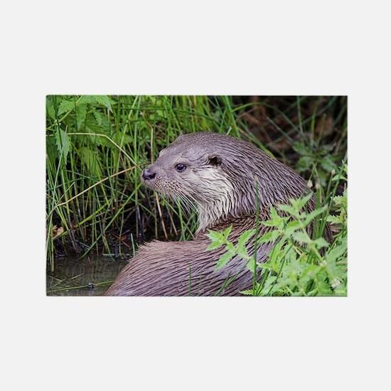 European otter - Rectangle Magnet