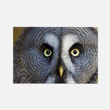 Great grey owl - Rectangle Magnet
