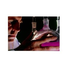 in benzene - Rectangle Magnet