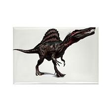 Spinosaurus dinosaur, artwork - Rectangle Magnet